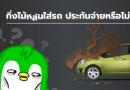 กิ่งไม้หล่นใส่รถ